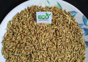 Barley Exporter