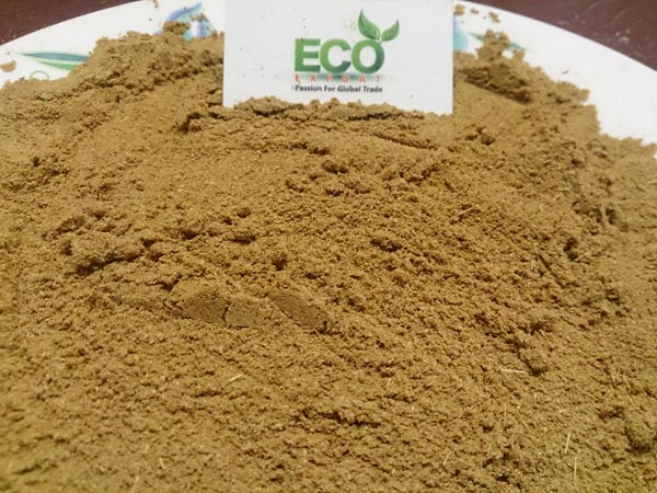 Indian Coriander Powder Exporter